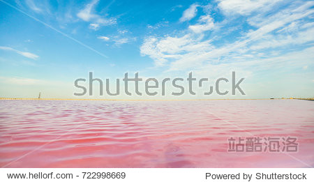 Brine and salt of a pink lake  colored by microalgae Dunaliella salina  famous for its antioxidant properties  enriching water by beta-carotene  used in medicine  dermatology and spa