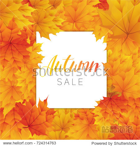 Autumn sale banner template with realistic maple leaf background