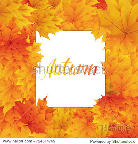 Autumn with realistic maple leaf background and white paper blank space