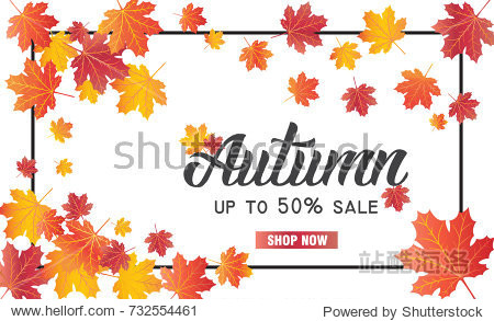 Abstract Vector Illustration Autumn Sale Background with Falling Autumn Leaves.