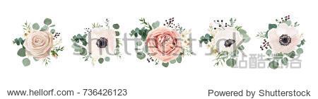 Vector floral bouquet design: garden pink peach lavender creamy powder pale Rose wax flower  anemone Eucalyptus branch greenery leaves berry. Wedding vector invite card Watercolor designer element set
