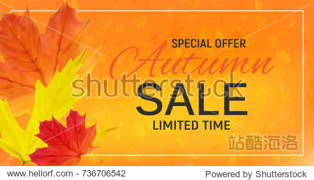 Shiny Autumn Leaves Sale Banner. Business Discount Card.  Illustration