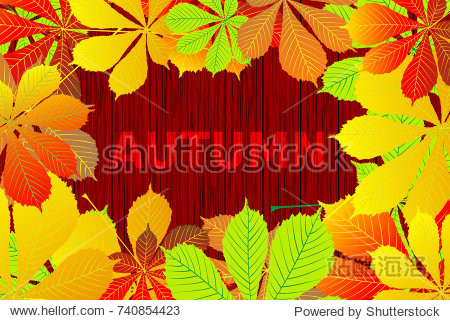 Autumn - Horse chestnut leaves - vector background  Autumnal leaf of buckeye  (Aesculus hippocastanum)