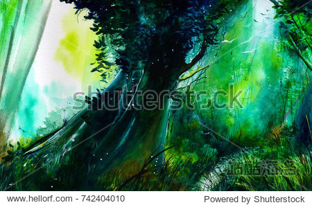 Enchanted forest. Watercolor illustration. Handmade painting  Brazil.
