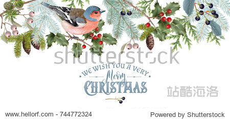 Vector vintage border with winter forest branches and bird. Highly detailed winter design for Christmas greeting card  party invitation  holiday sales. Can be used for poster  web page  packaging