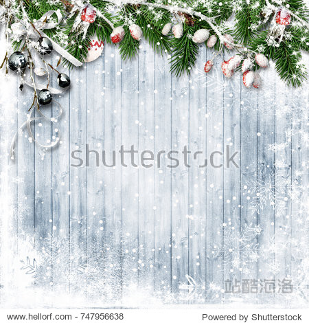 Christmas firtree with holly  snowfall on wooden white board