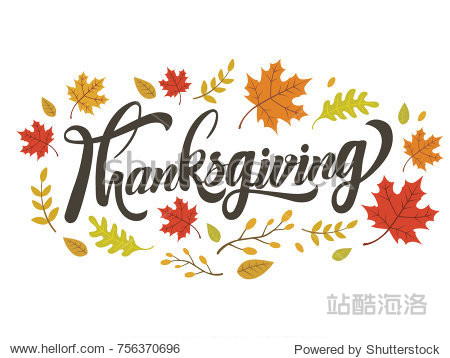 Thanksgiving lettering design with colorful flower isolate on white background vector illustration