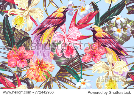 Tropical seamless vector pattern background with exotic flowers  palm leaves  jungle leaf  hibiscus  orchid flower  bird of paradise. Vintage vector botanical illustration