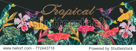 Tropical flowers  hummingbirds  palm leaves  jungle leaf  hibiscus  orchid flower  bird of paradise. Vector exotic background. Vintage botanical illustration for greeting card  wallpaper
