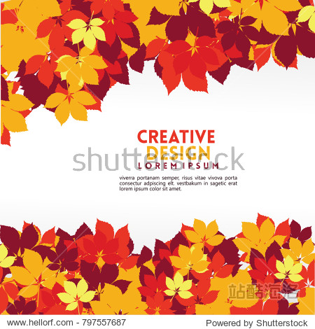 Stylish cute colorful maple leaves background