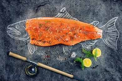 raw salmon fish steak with ingredients like lemon, pepper, sea salt and dill on black board, sketched image with chalk of salmon fish with steak and fishing rod