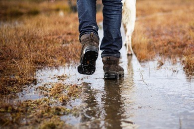 Man in hiking boots and jeans walking with dog in a rainy day swamp. Bad weather.