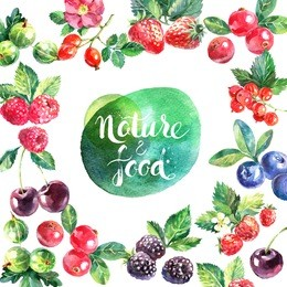 Eco food organic cafe menu frame design. Watercolor hand drawn natural fresh fruits and berries with blotch banner on white background
