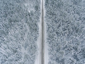 Winter season aerial top down view over the snowy pine tree forest with a road going through it.