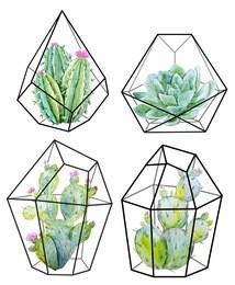 Watercolor floral  cactus. cactuses and succulents in terrariums  geometric florariume. black geometric crystal.