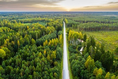Overhead view of foliage trees, river and road in Western Europe. Aerial photography.
