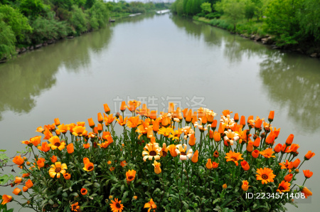 杭州西溪湿地风光