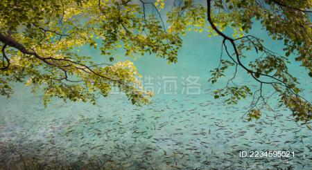 九寨-童话世界-水