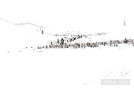 冬季喀纳斯景区