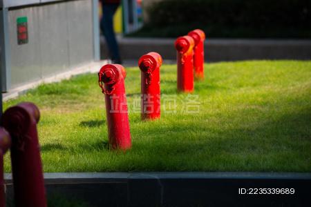 草坪上的消防栓