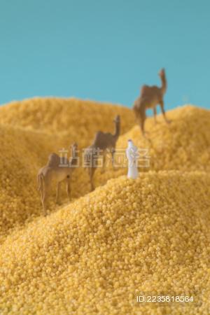 缩微小人 小人国 微距  miniature 小米 沙漠里的阿拉伯人 干货   五谷杂粮   特产   农产品   农家干货 White Jelly Fungus on blue background