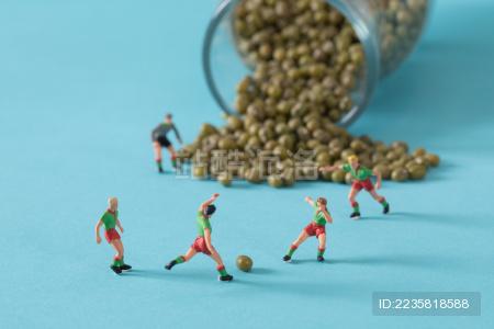 缩微小人 小人国 微距 miniature 绿豆   干货   五谷杂粮   特产   农产品   农家干货 White Jelly Fungus on blue background