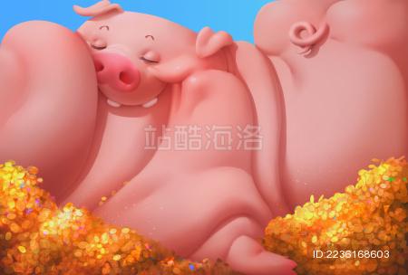 猪年五花生活
