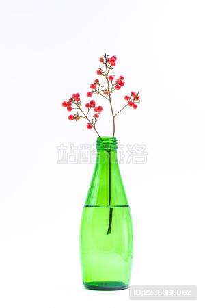 白色背景前装在绿色玻璃花瓶里的红色花