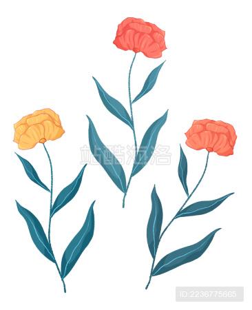 清新美丽的植物花朵插画素材