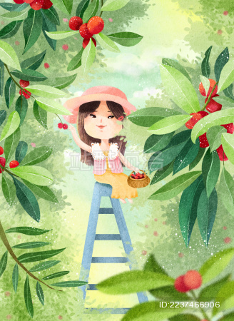 女孩爬上梯子采摘杨梅