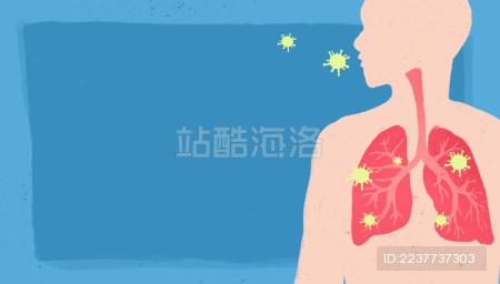 人体肺部剖析图无字横图