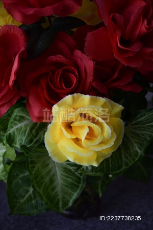 塑胶玫瑰花