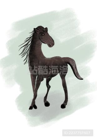 一匹小马儿