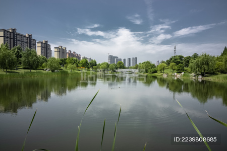 城市中的公园