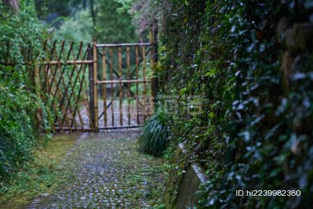 雨后的篱笆门